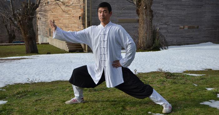 Biographie de Maître ZHANG Aijun